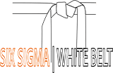 Six Sigma White Belt